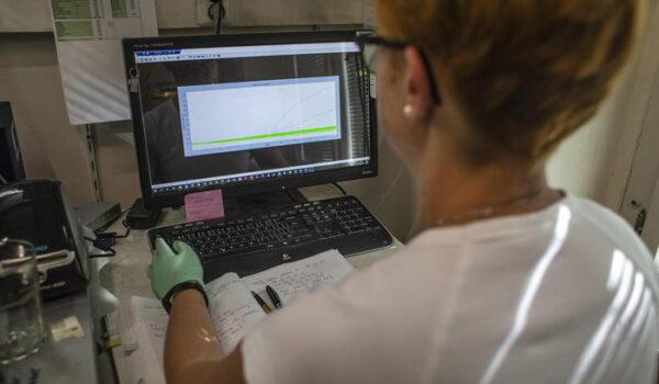 Tumori pancreas, scoperto biomarcatore per cure su misura